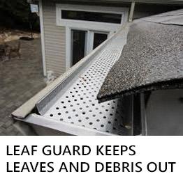 Leaf Guard